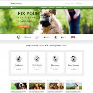 Làm website thú cưng 11