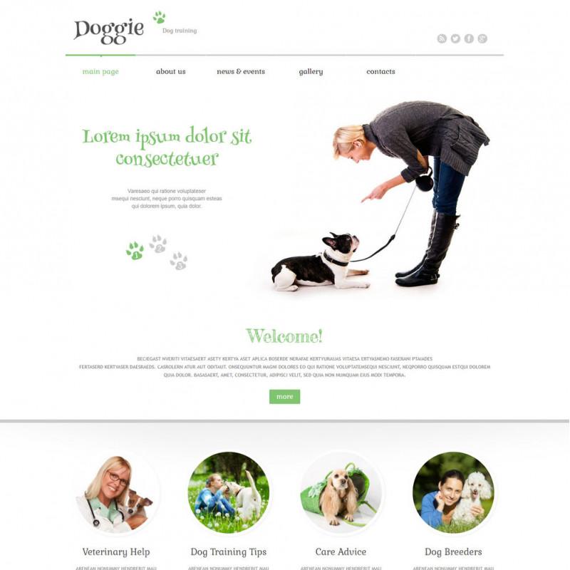 Làm website thú cưng 13
