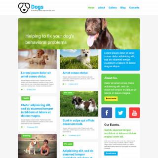 Làm website thú cưng 14