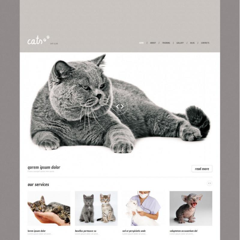 Làm website thú cưng 22