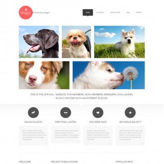 Làm website thú cưng 23