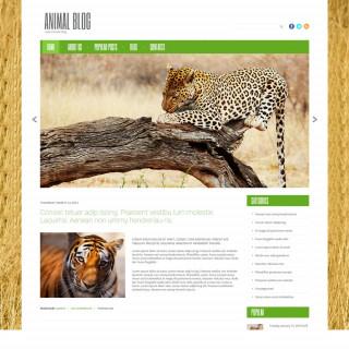 Làm website thú cưng 24