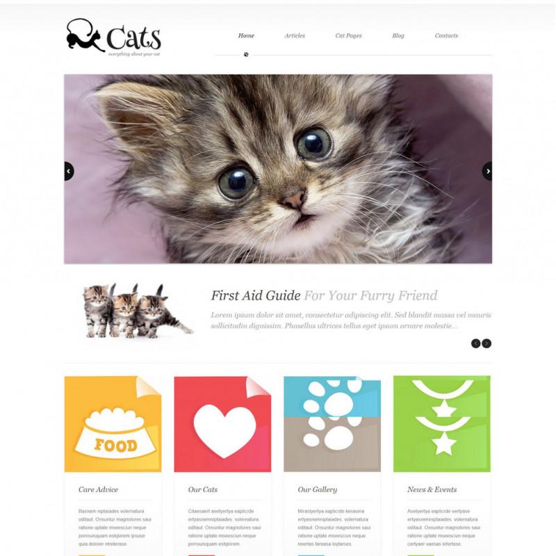 Làm website thú cưng 27