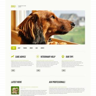 Làm website thú cưng 28