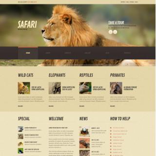 Làm website thú cưng 29