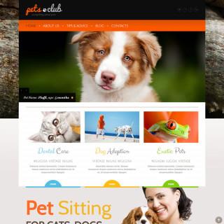 Làm website thú cưng 30