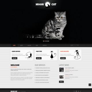 Làm website thú cưng 31