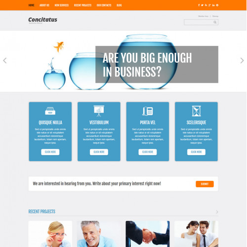 Làm website kinh doanh 142