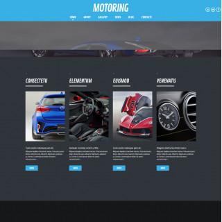 Làm website ô tô 79