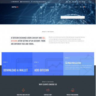 Làm website tài chính 11